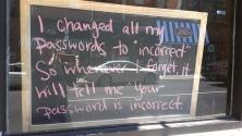 Passwords - lulu hoeller
